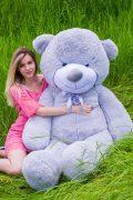 серый плюшевый медведь 2 метра