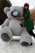 Самый большой медведь